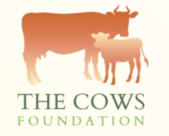 Image The Cows Foundation